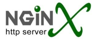 Nginx servidor